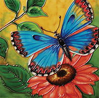 Butterfly Beauty I
